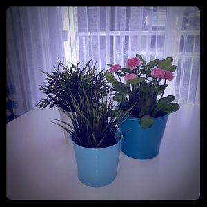 Other - 3 plants pots (with flowers)